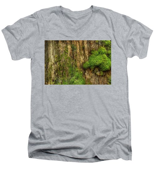 Men's V-Neck T-Shirt featuring the photograph North Side Of The Tree by Mike Eingle