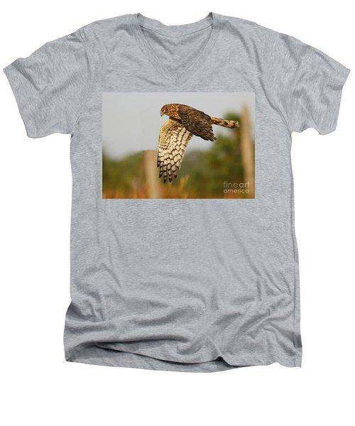 Northern Harrier Flight Men's V-Neck T-Shirt by Myrna Bradshaw