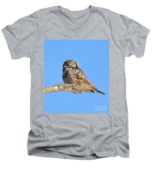 Men's V-Neck T-Shirt featuring the photograph Northern Hawk-owl On Limb by Debbie Stahre