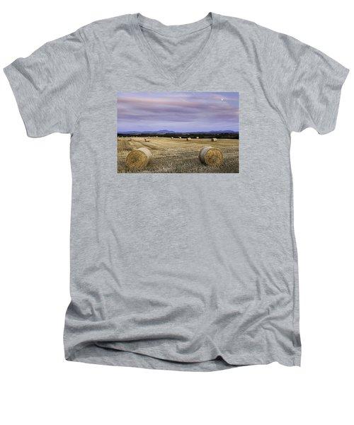 Northern Lakeland View Men's V-Neck T-Shirt