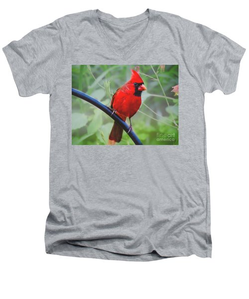 Northern Male Red Cardinal Bird Men's V-Neck T-Shirt