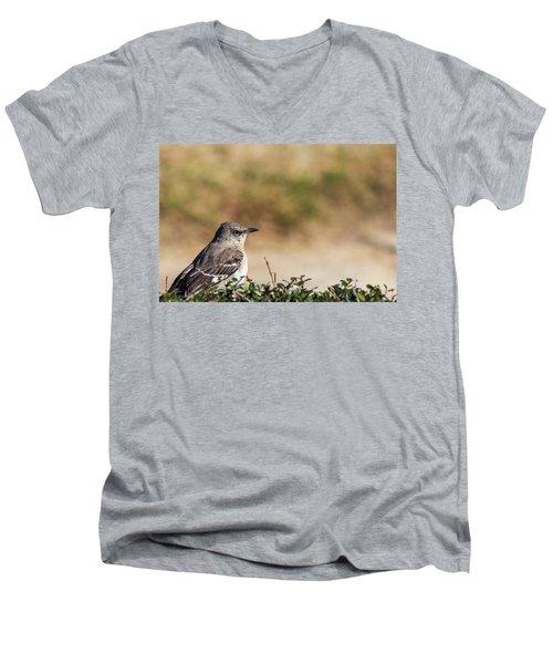 Northern Mockingbird Sitting On Top Of A Hedge Men's V-Neck T-Shirt