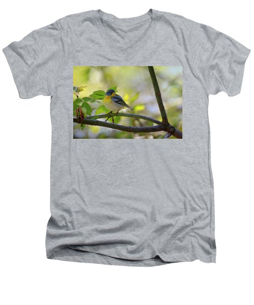 Northern Parula Men's V-Neck T-Shirt by Gary Hall