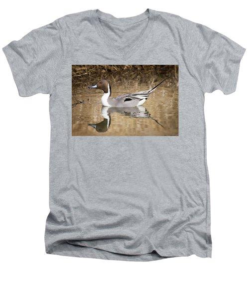Northern Pintail Drake Men's V-Neck T-Shirt