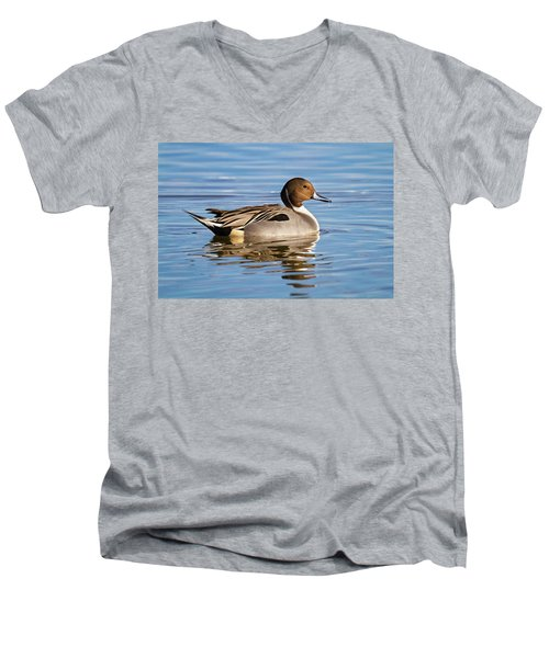 Northern Pintail Duck Men's V-Neck T-Shirt