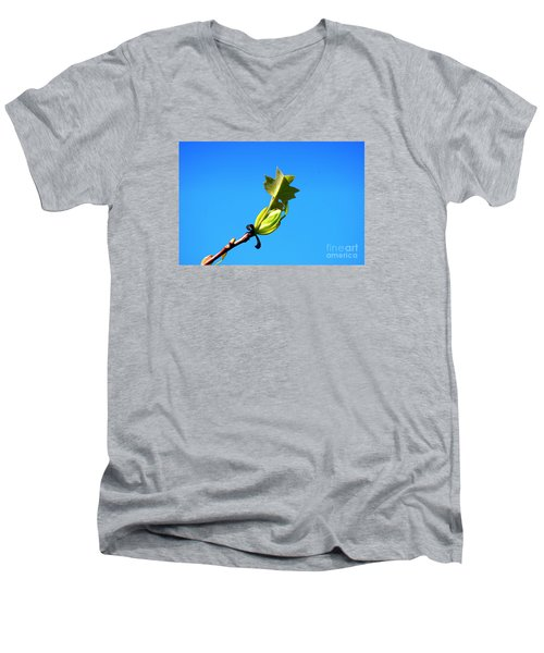 Men's V-Neck T-Shirt featuring the photograph Norway Maple Leaf 20120402_171a by Tina Hopkins