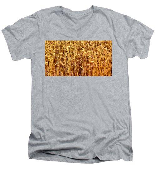 Not Just In Kansas Men's V-Neck T-Shirt