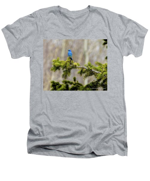 Notice The Pretty Bluebird Men's V-Neck T-Shirt by Yeates Photography