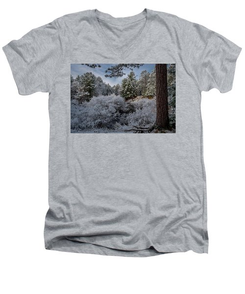 Novenber 1 On The Sucker River Men's V-Neck T-Shirt