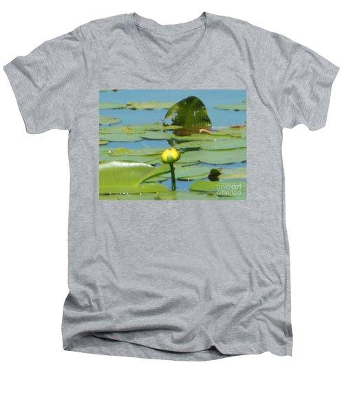Nuphar Lutea Yellow Pond Men's V-Neck T-Shirt