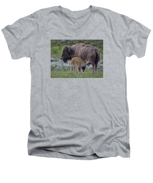 Nurtured Men's V-Neck T-Shirt by Elizabeth Eldridge