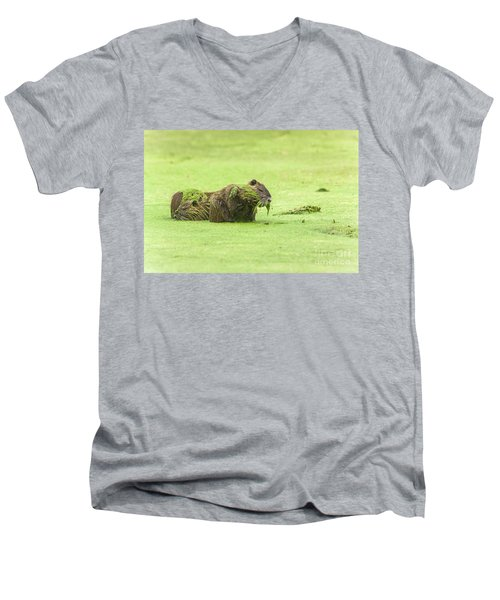 Men's V-Neck T-Shirt featuring the photograph Nutria In A Pesto Sauce by Robert Frederick