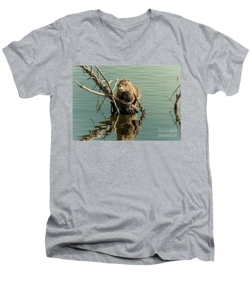 Men's V-Neck T-Shirt featuring the photograph Nutria On Stick-up by Robert Frederick