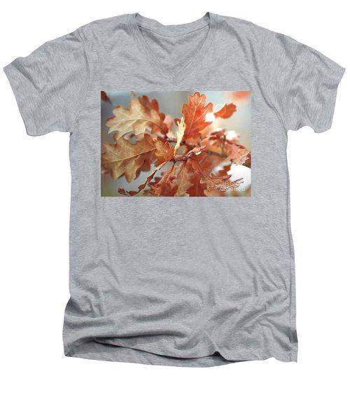 Oak Leaves In Autumn Men's V-Neck T-Shirt by Wilhelm Hufnagl