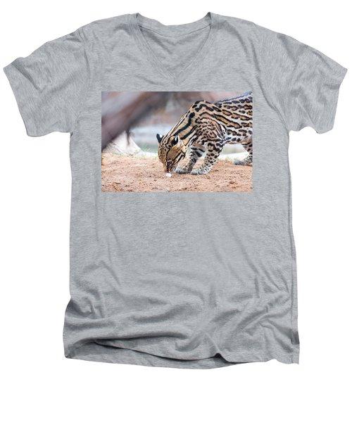 Ocelot And Egg Men's V-Neck T-Shirt