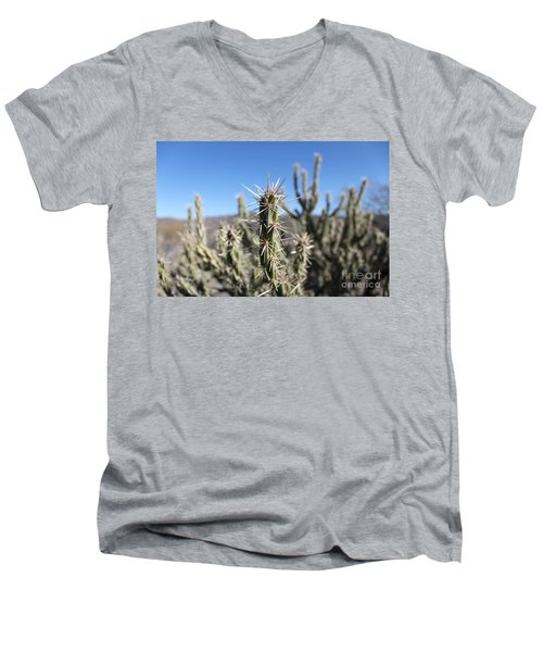 Ocotillo Men's V-Neck T-Shirt