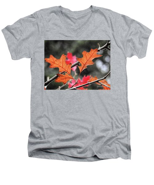 Men's V-Neck T-Shirt featuring the photograph October by Peggy Hughes