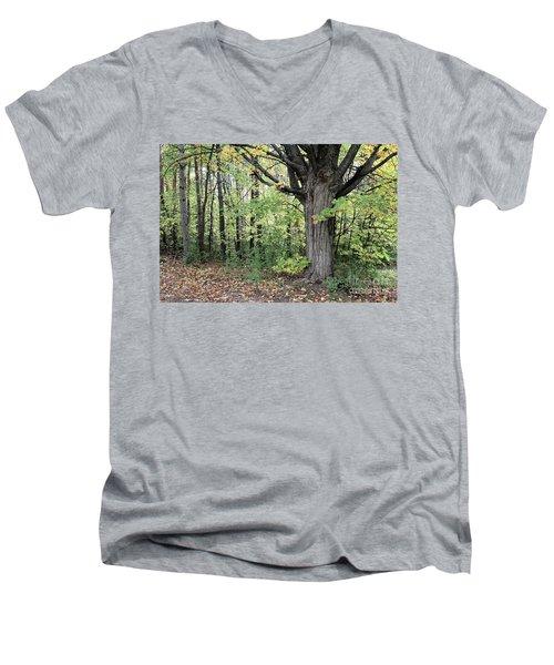 October Trees Men's V-Neck T-Shirt