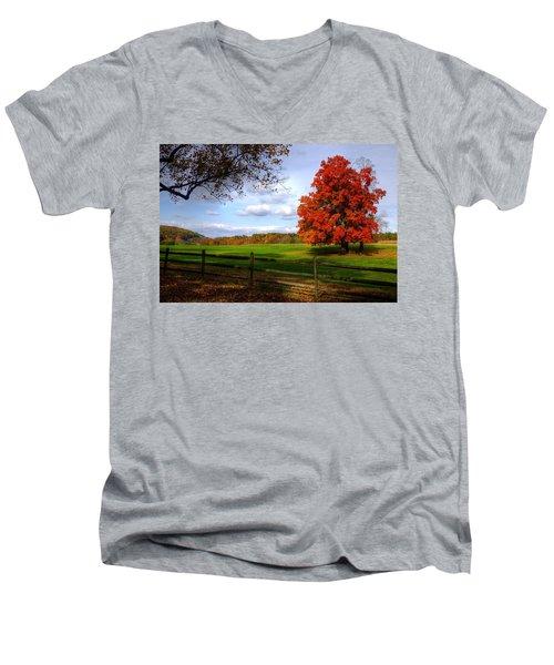 Oh Beautiful Tree Men's V-Neck T-Shirt