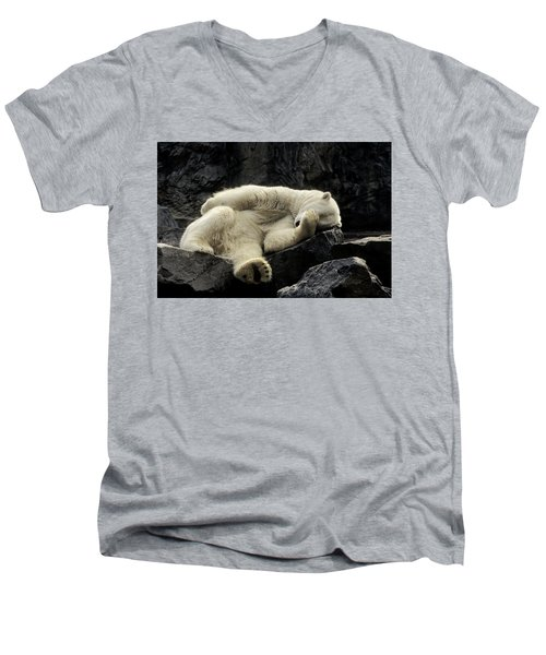 Oh What A Night Polar Bear Men's V-Neck T-Shirt