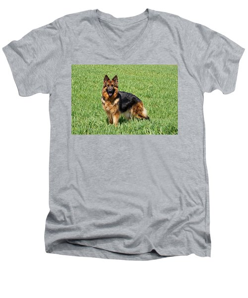 Ohana In Field Men's V-Neck T-Shirt