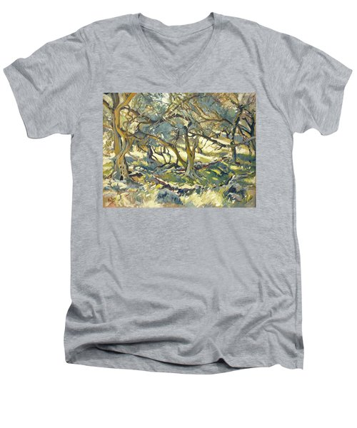 Oilve Grove Marmari Beach Men's V-Neck T-Shirt