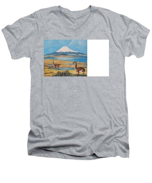 Ojos Del Salado Volcano Men's V-Neck T-Shirt