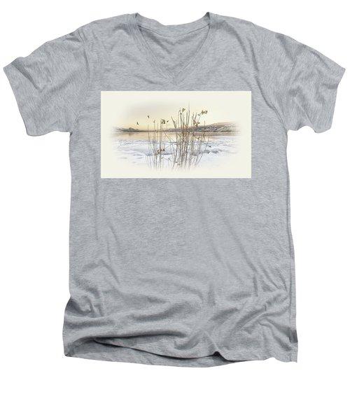 Okanagan Glod Men's V-Neck T-Shirt