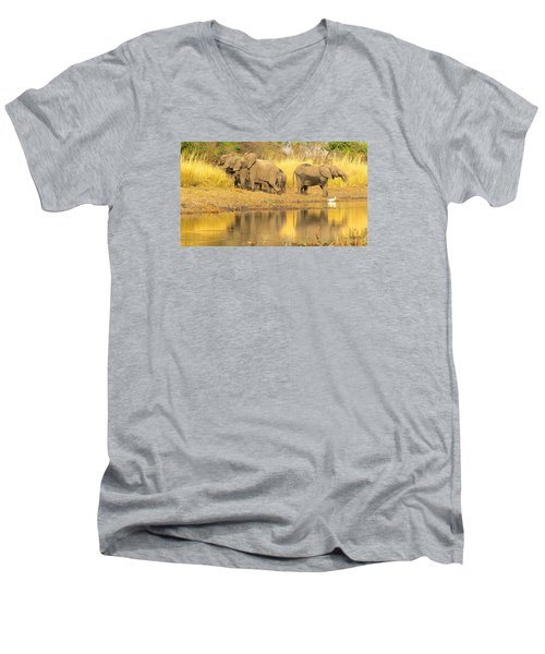 Okavango Scramble Men's V-Neck T-Shirt