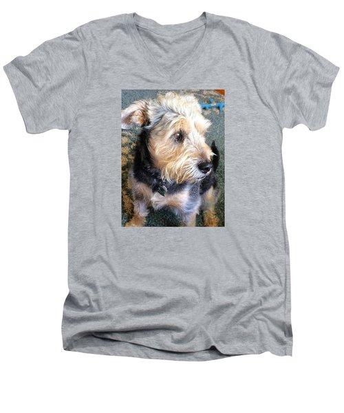 Old Dogs Rock Men's V-Neck T-Shirt