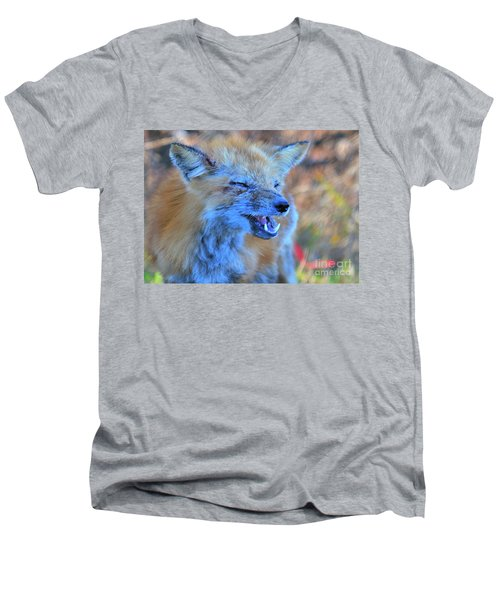 Men's V-Neck T-Shirt featuring the photograph Old Fox by Debbie Stahre