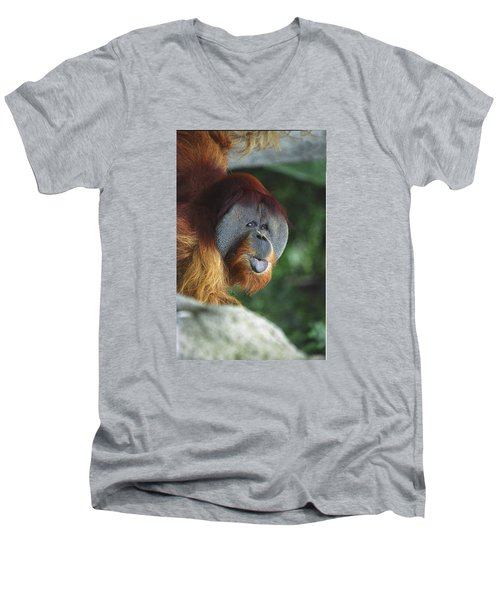 Old Man Of The Forest Men's V-Neck T-Shirt by Greg Slocum