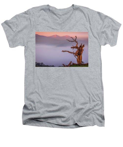 Old Oak And Mt. Diablo On A Foggy Morning Men's V-Neck T-Shirt