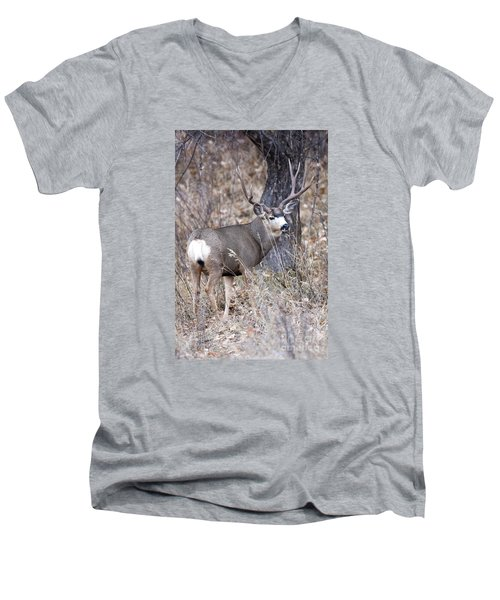 Old Orchard II Men's V-Neck T-Shirt