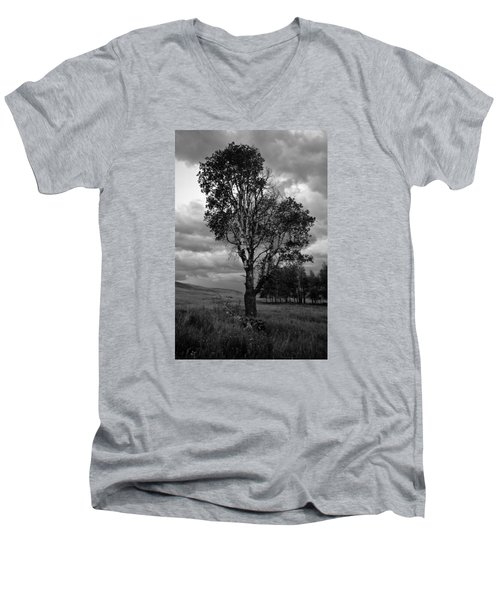 Old Tree, Lost Trail Wildlife Refuge Men's V-Neck T-Shirt