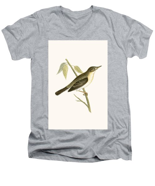 Olivaceous Warbler Men's V-Neck T-Shirt by English School