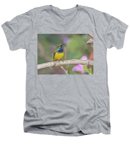 Olive-backed Sunbird Men's V-Neck T-Shirt