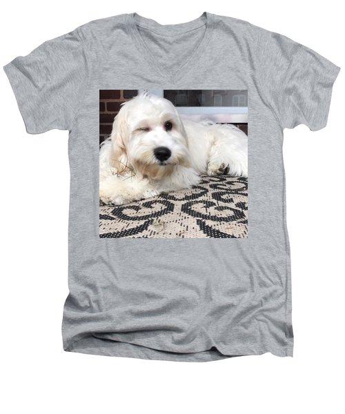Oliver Wink Men's V-Neck T-Shirt
