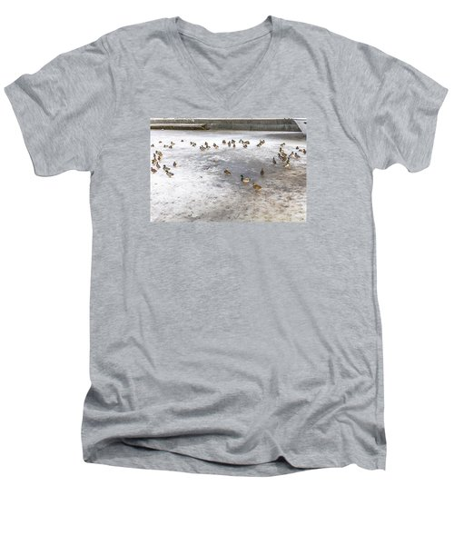 On Ice  Men's V-Neck T-Shirt by Leif Sohlman