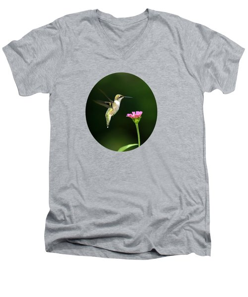 One Hummingbird Men's V-Neck T-Shirt