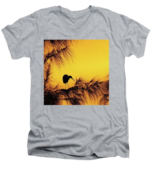 One Of A Series Taken At Mahoe Bay Men's V-Neck T-Shirt