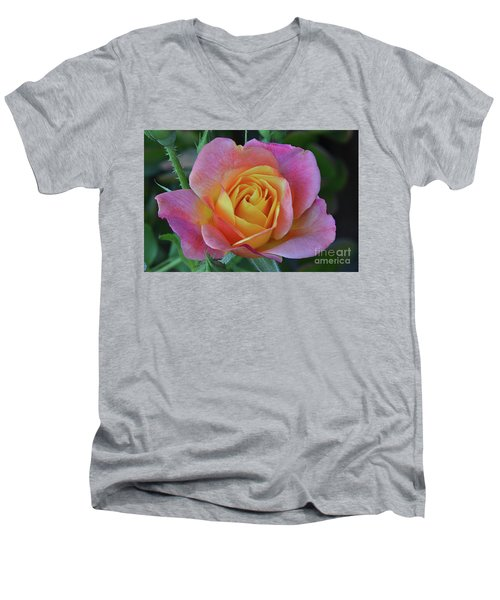 One Of Several Roses Men's V-Neck T-Shirt