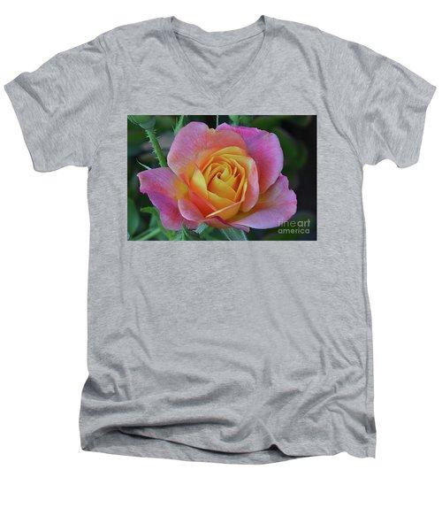 One Of Several Roses Men's V-Neck T-Shirt