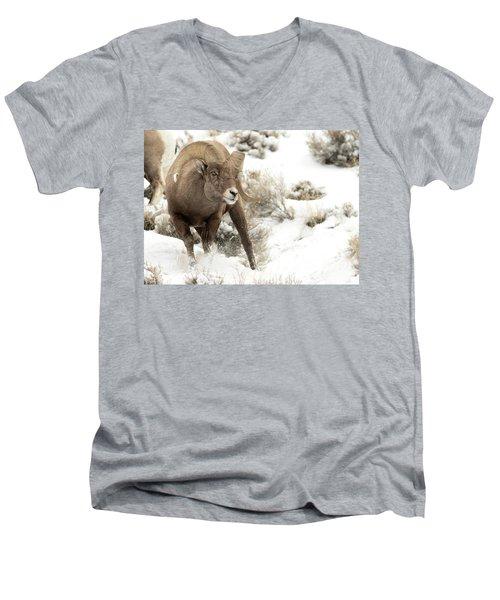 One Tough Guy Men's V-Neck T-Shirt