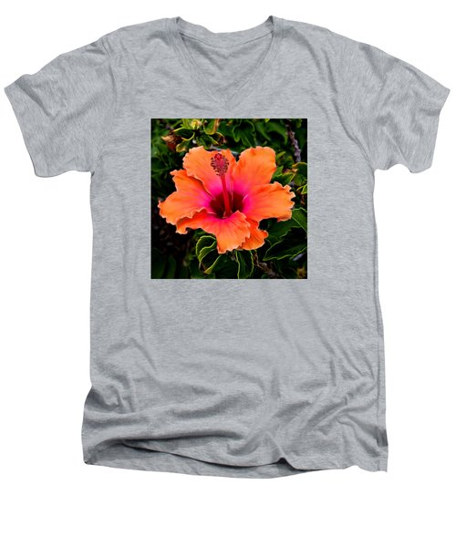 Orange And Pink Hibiscus 2 Men's V-Neck T-Shirt