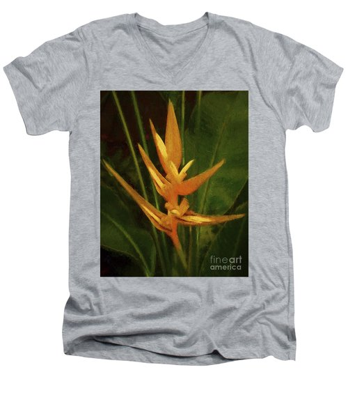 Orange Art Men's V-Neck T-Shirt
