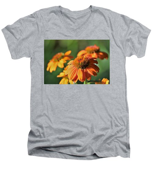 Orange Cone Flowers In Morning Light Men's V-Neck T-Shirt