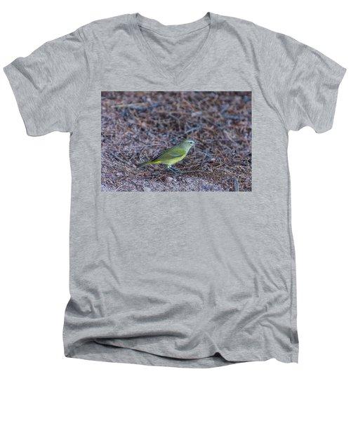 Orange-crowned Warbler Men's V-Neck T-Shirt