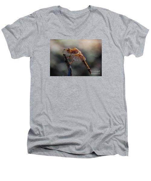Dragonfly 1 Men's V-Neck T-Shirt