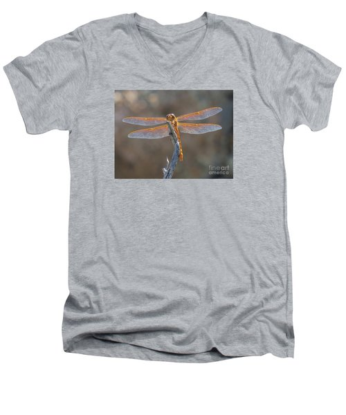Dragonfly 3 Men's V-Neck T-Shirt